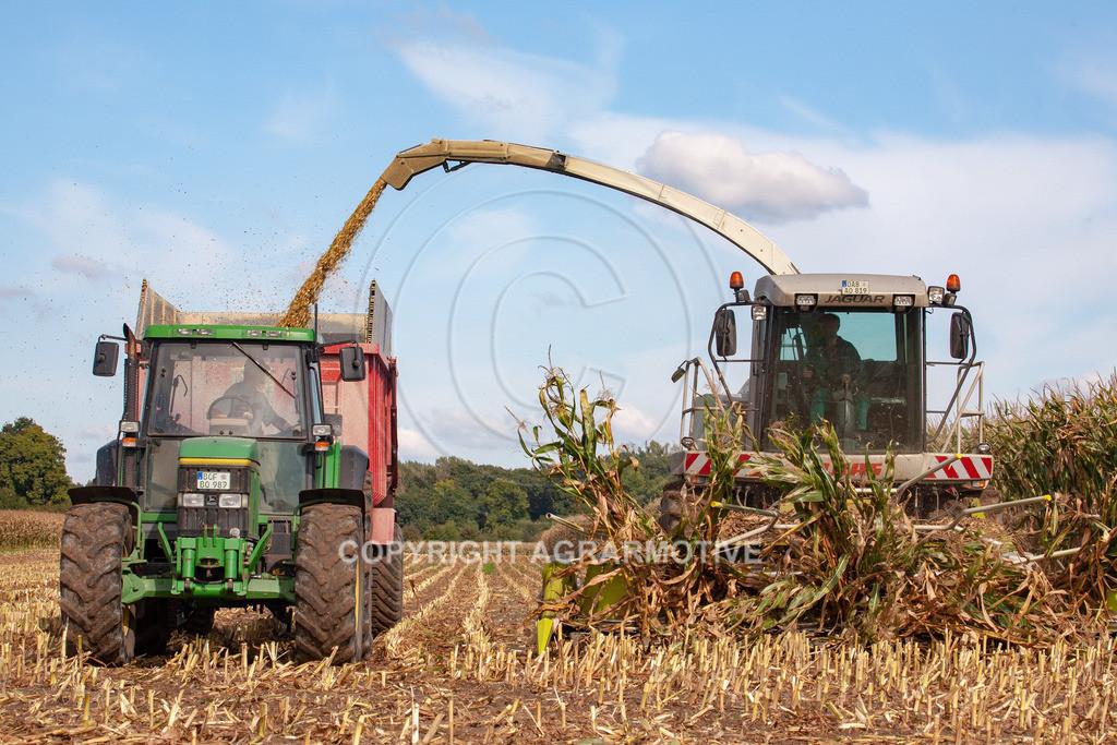20080914-IMG_8938 | Silomais wird gehäckselt - AGRARFOTO Bilder aus der Landwirtschaft