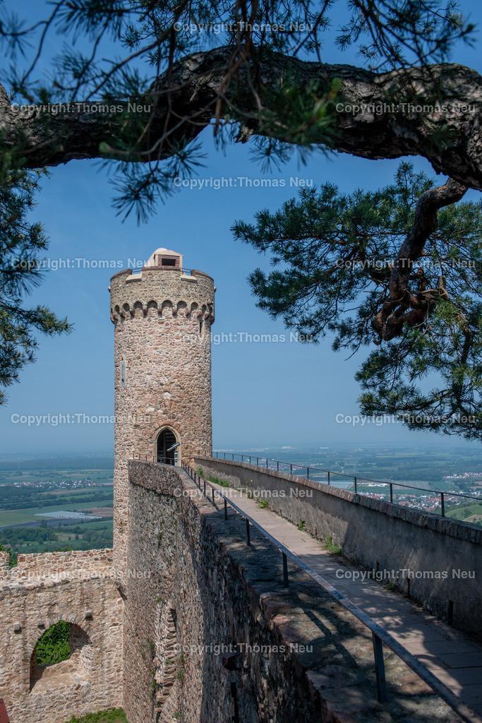 DSC_0077 | Bensheim, Auerbach, Schloss Auerbach, Burg, Mittelalter, Ruine, ,, Bild: Thomas Neu