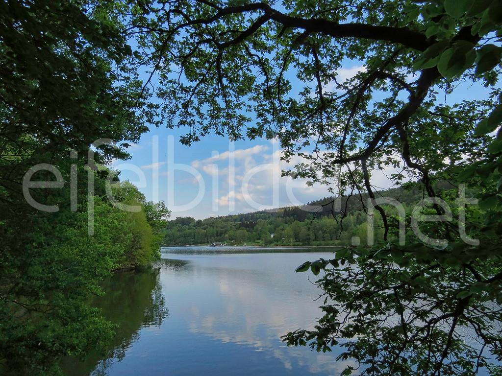 Kronenburger See | Abendstimmung am Kronenburger See
