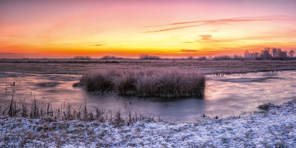 Sonnenaufgang in den Hammewiesen   Morgendämmerung an einer Blänke in den Hammewiesen.