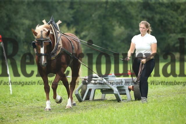 Marbach_Leistungsprfg_Ziehen und Fahren_KN_23_Fiadora (15)