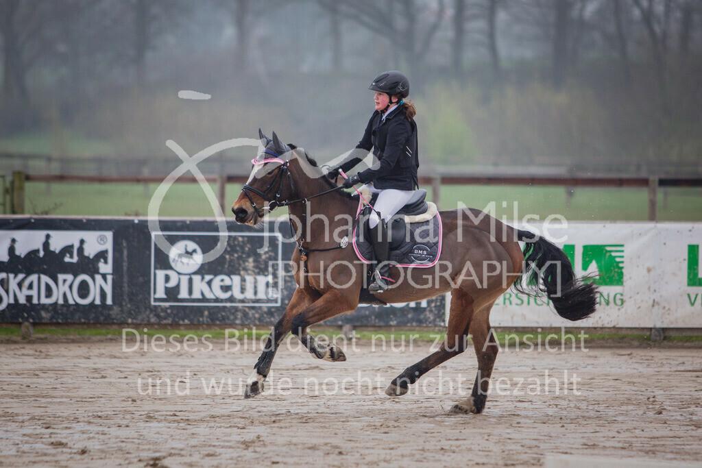 190406_Frühlingsfest_StilE-001 | Frühlingsfest der Pferde 2019, von Lützow Herford, Stil-WB mit erlaubter Zeit