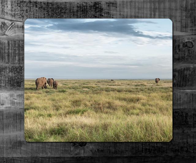 ENDLOSE WEITE | Kenia