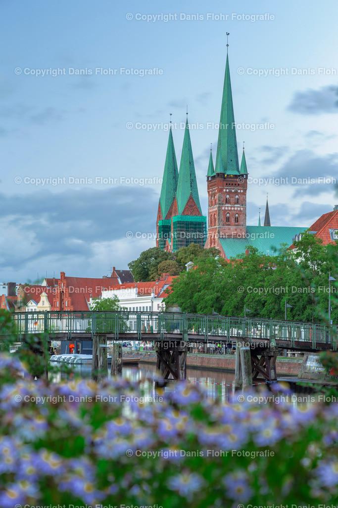 Blütenblick auf St. Petri & die Marienkirche | Ein mit Blüten geschmückter Blick auf die St. Petri sowie Marienkirche in Lübeck