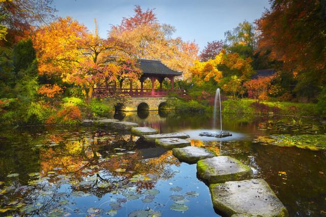 Der Pfad zum Glück | Der Herbst ist im Japanischen Garten von Leverkusen angekommen. Jetzt zeigt er sich von seiner schönsten Seite. Der steinerne Pfad führt über den Teich zur Brücke. Die Motivvielfalt ist gewaltig. Von weitwinkligen Panoramen bis zum Blütenmakro ist alles dabei.