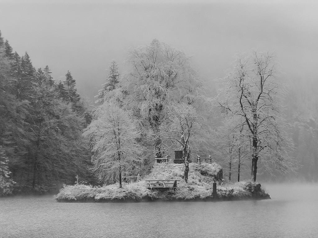 Insel im Königssee