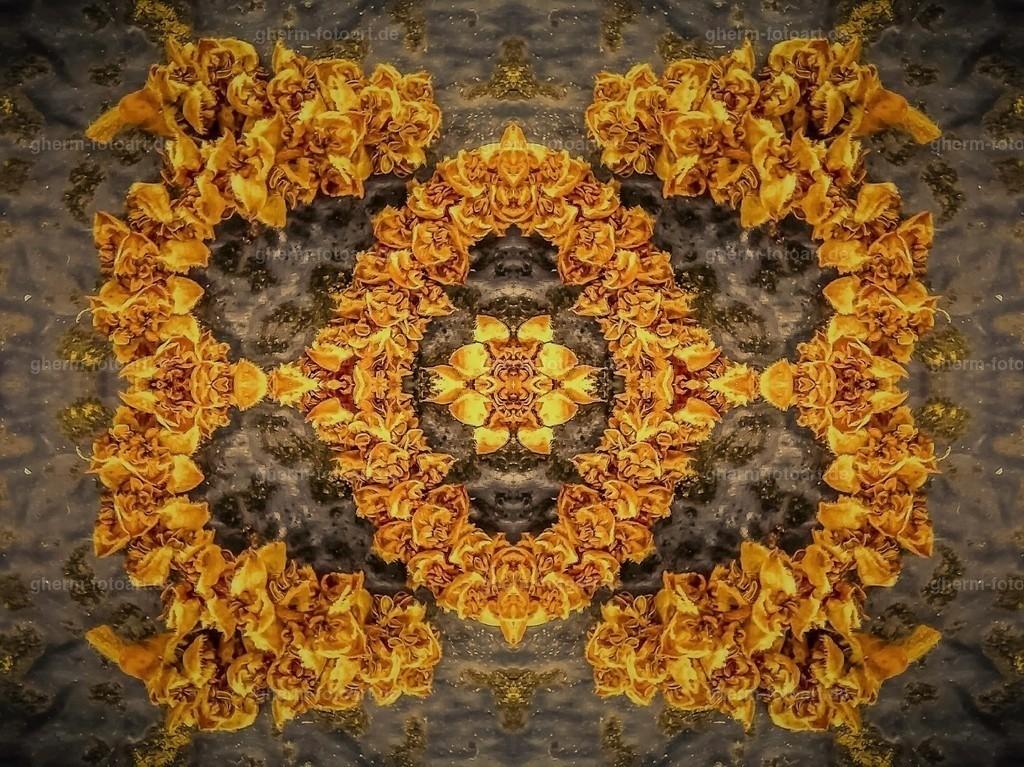 P1130152-LR-tobacco-korr-2 (7)-kaleidoskop