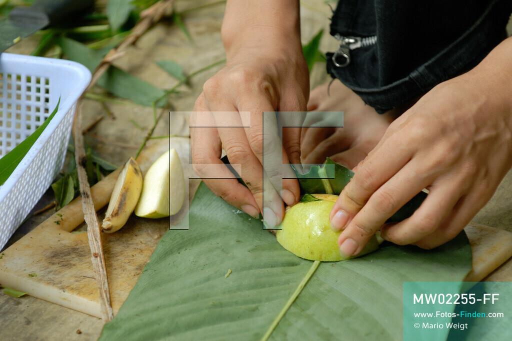 MW02255-FF | Vietnam | Provinz Ninh Binh | Reportage: Endangered Primate Rescue Center | Eine Tierplegerin bereitet Futter für Gibbons vor. Der Deutsche Tilo Nadler leitet das Rettungszentrum für gefährdete Primaten im Cuc-Phuong-Nationalpark.    ** Feindaten bitte anfragen bei Mario Weigt Photography, info@asia-stories.com **