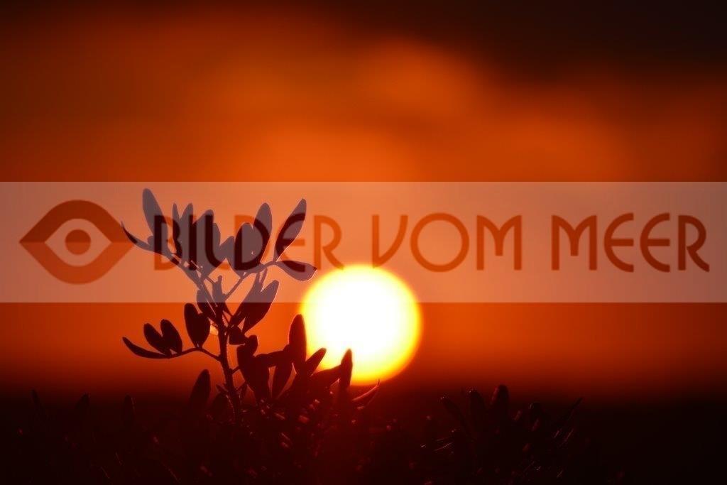 Bilder Sonnenuntergangam Meer | Sonnenuntgergang in Spanien