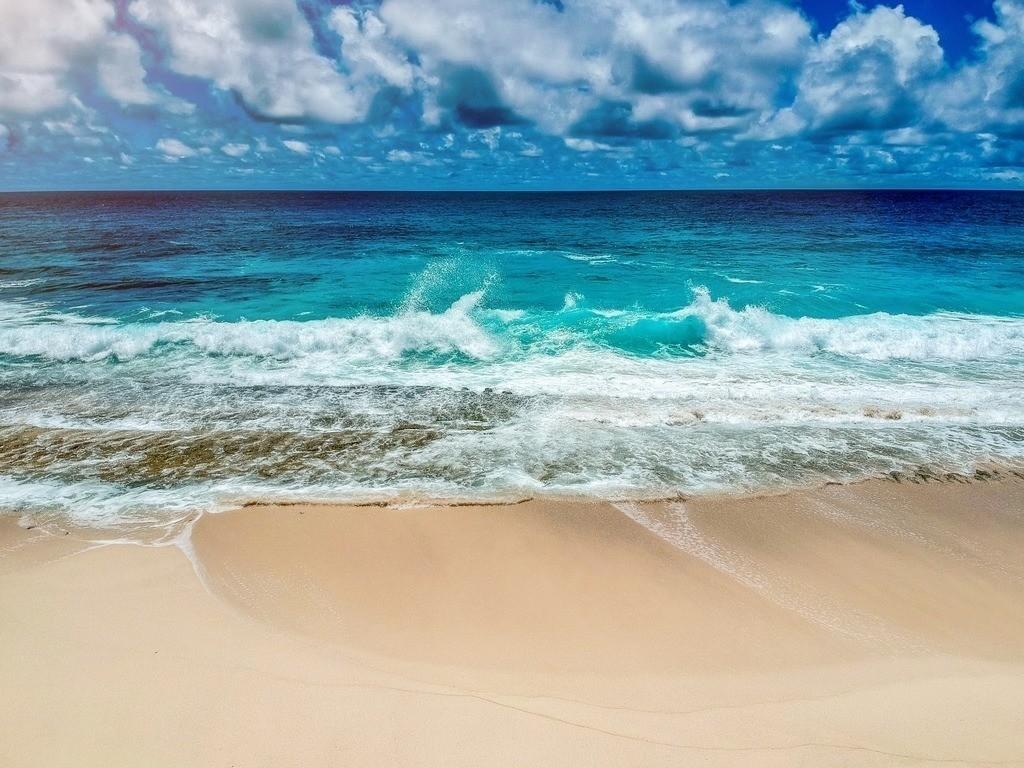 Waves by Drone | Blick auf einen einsamen Strand auf den Seychellen