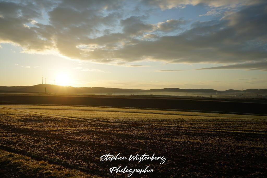 Golden Fields | Sonnenaufgang bei Imsbach / Donnersbergkreis