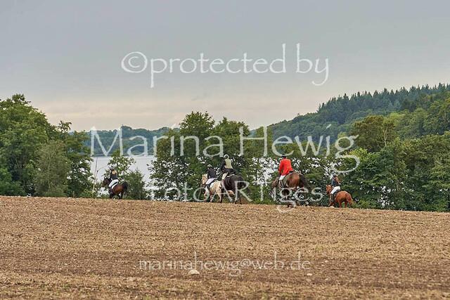 Jagd Perdoel  214886_Marina Hewig