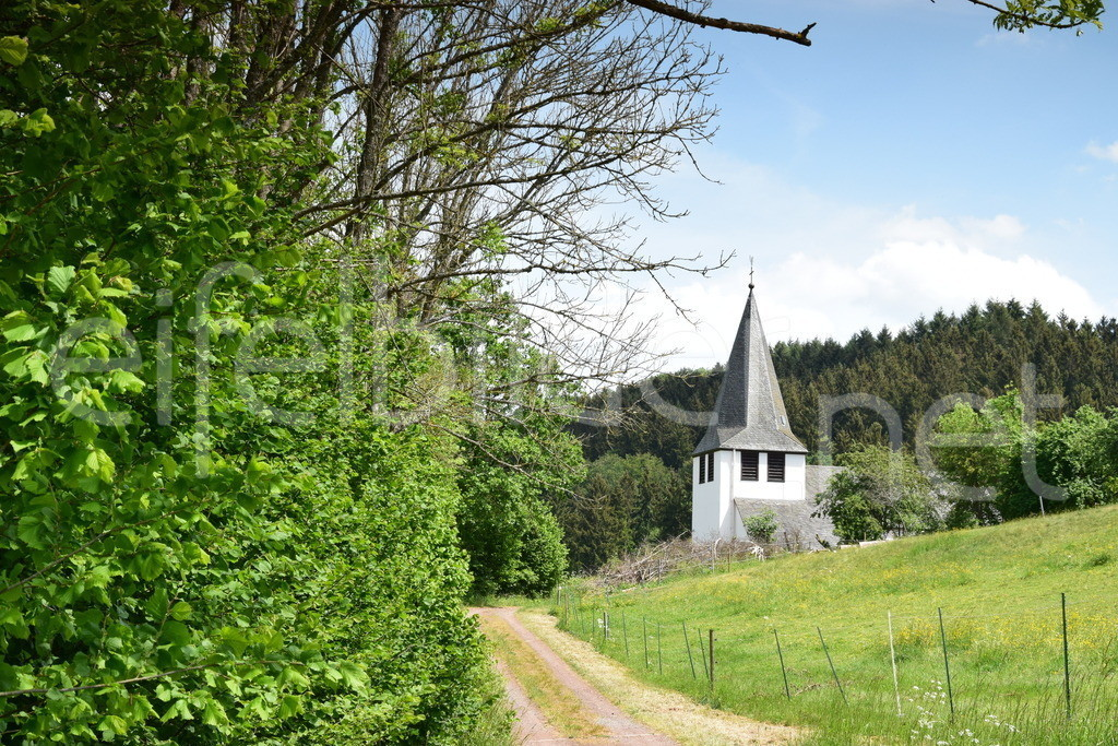Trittscheid im Frühling | Trittscheid, Gemeinde Üdersdorf
