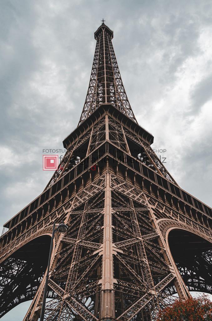 __Danilo_Schubert_mberkholz_Paris_0112 | Das Projekt