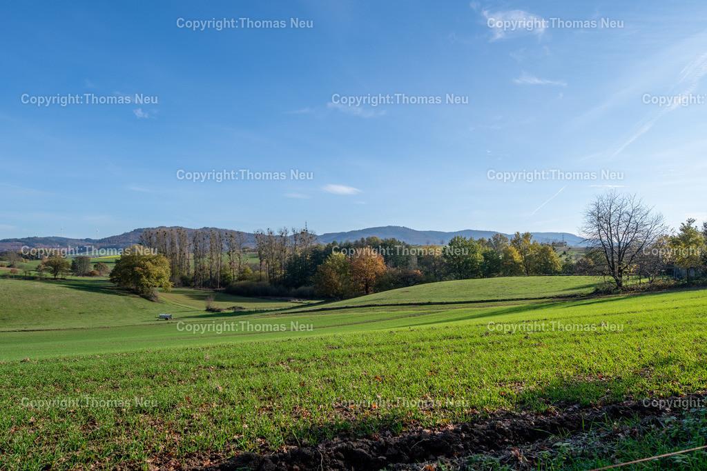 DSC_5118   bre,bli,Adventsspaziergang , Schlierbacher Tal bis zum Kunstweg Lindenfels Fürth,, Bild: Thomas Neu
