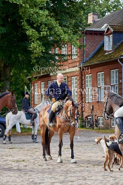 Jagd Knoop 217020_Marina Hewig