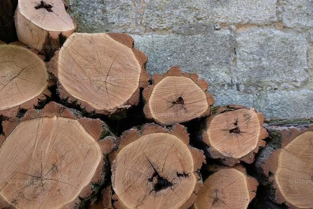 Gestapeltes Brennholz | Sauber gesägtes, rustikales Brennholz vor einer Mauer