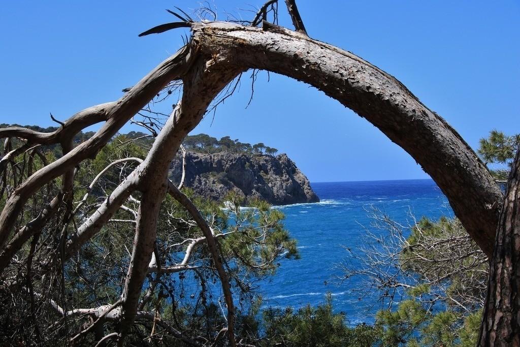 Küstenweg Cami dels Pintors | Küstenweg Cami dels Pintors bei Llucalcari