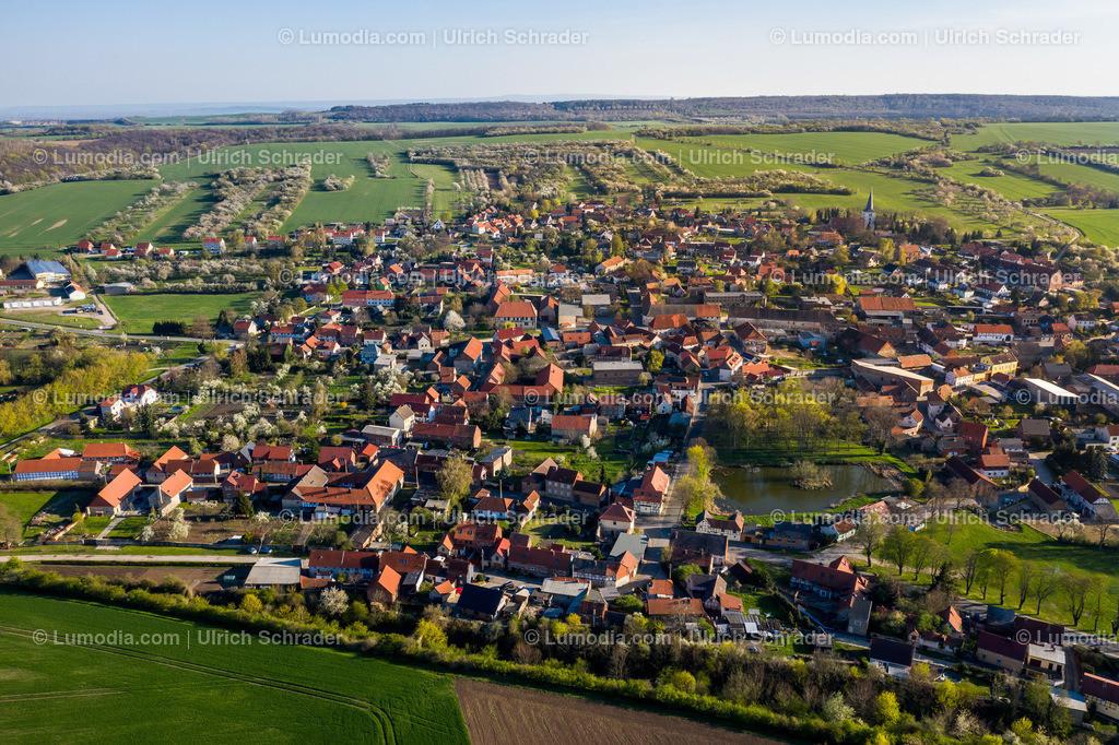 10049-50288 - Ansichten von Eilenstedt