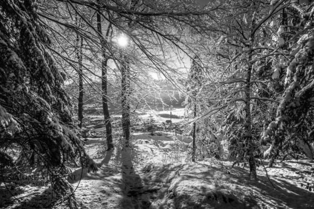 Winter auf dem Dobratsch    Winter auf dem Dobratsch in Kärnten