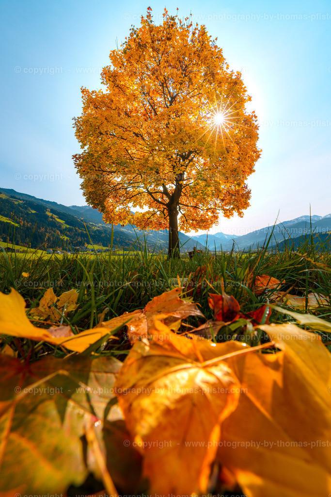 Herbst in Bruck im Zillertal