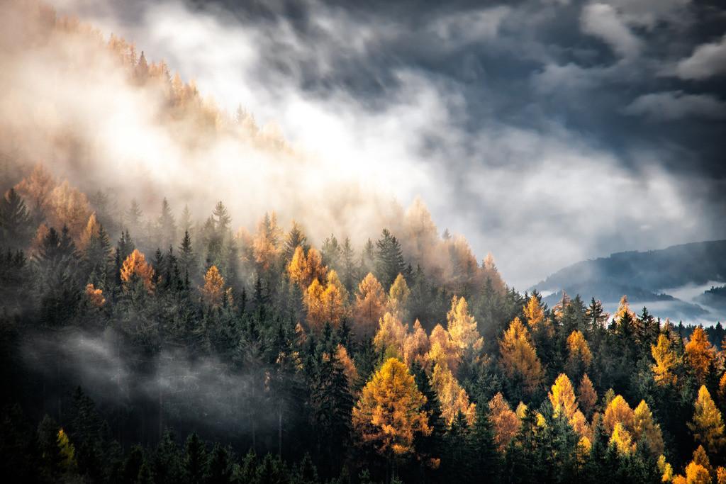 Herbstgefühle | Knappenberg