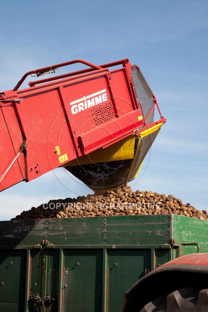20110929-IMG_5871 | Ernte auf einem Kartoffelfeld - AGRARBILDER