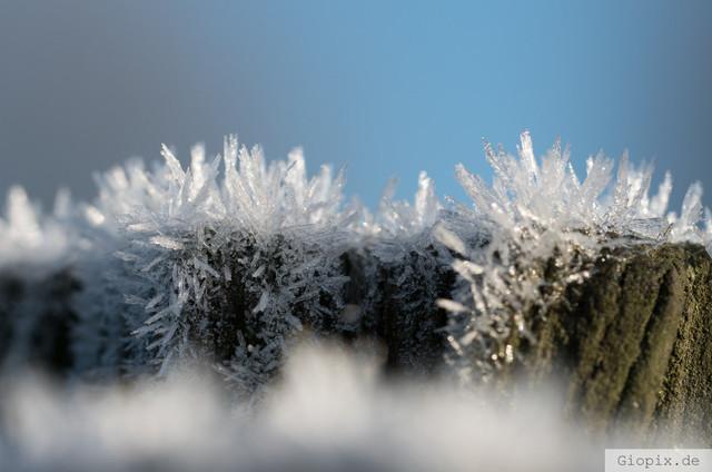 Frostkristalle auf Holz