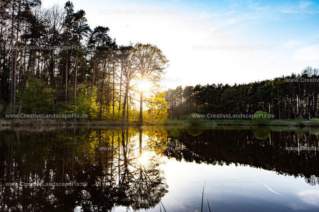 Bilder-aus_der_Natur1
