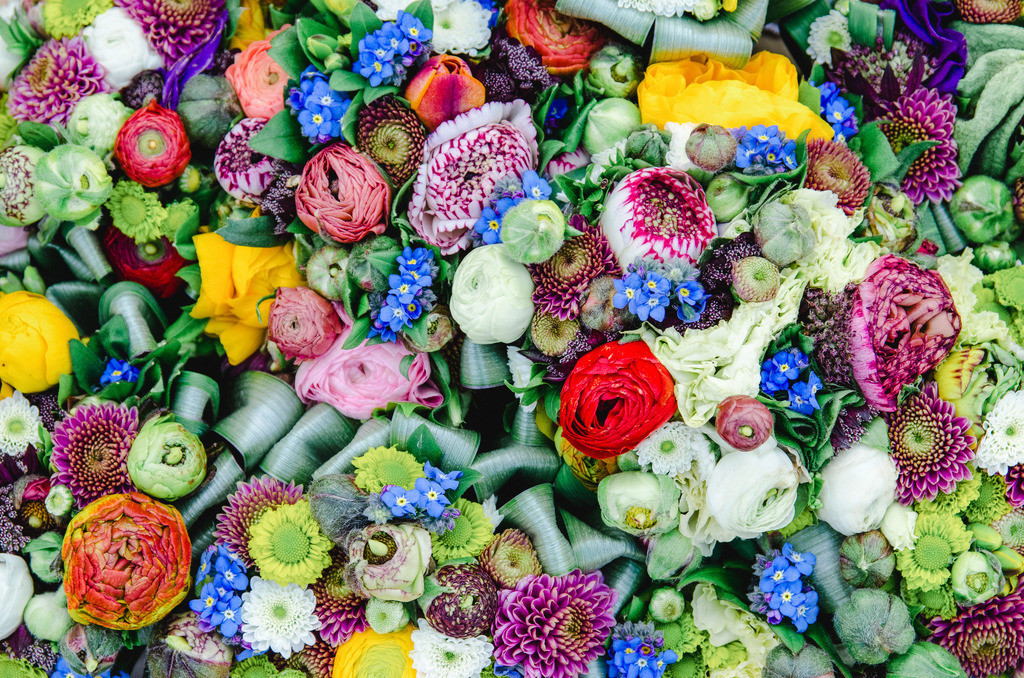 flowers stadtpark