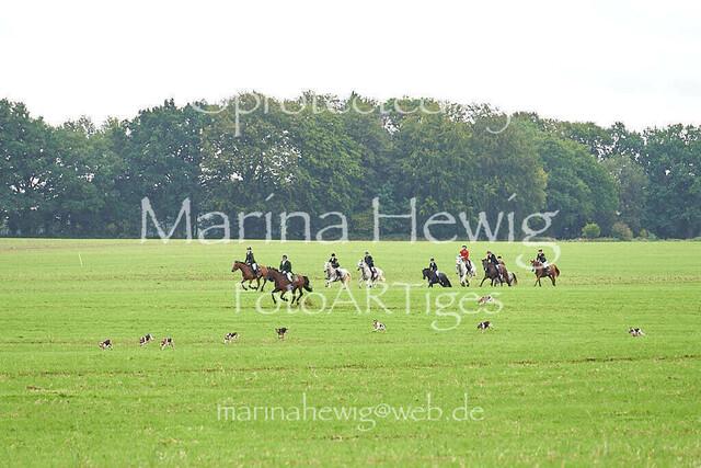 Jagd Perdoel  215480_Marina Hewig