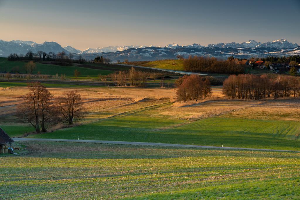Alpenblick_von_Lindau-Unterreitnau
