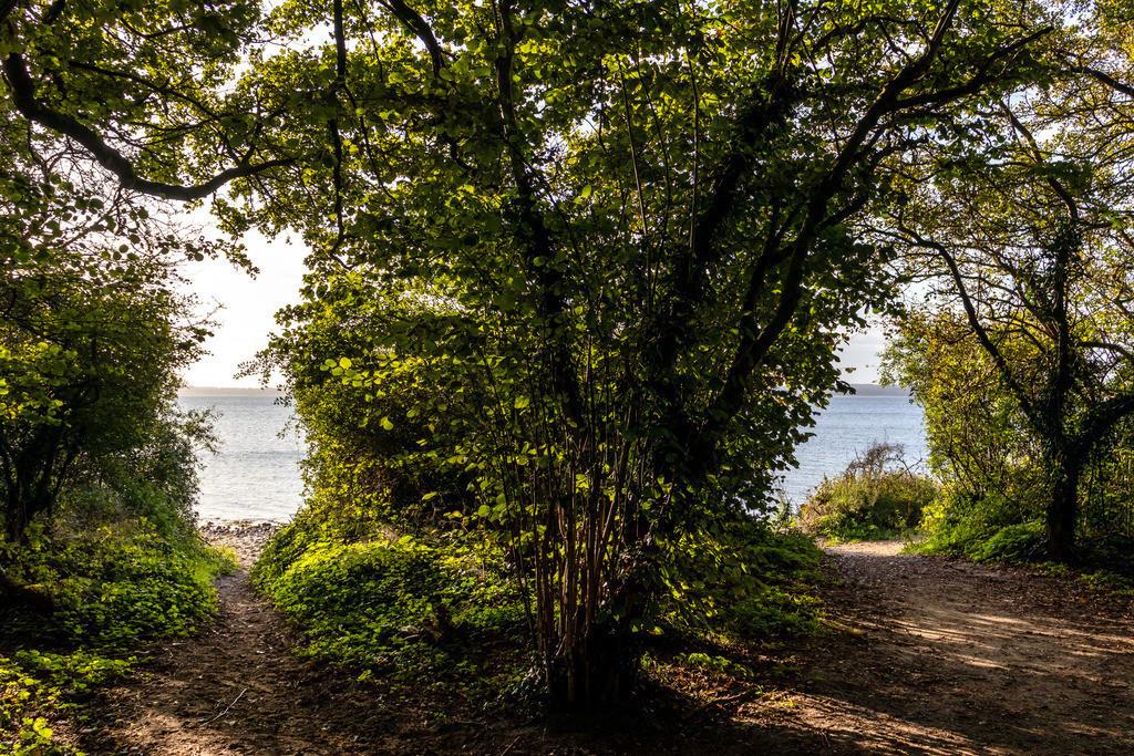 Steilküste in Kleinwaabs | Weg an den Strand in Kleinwaabs