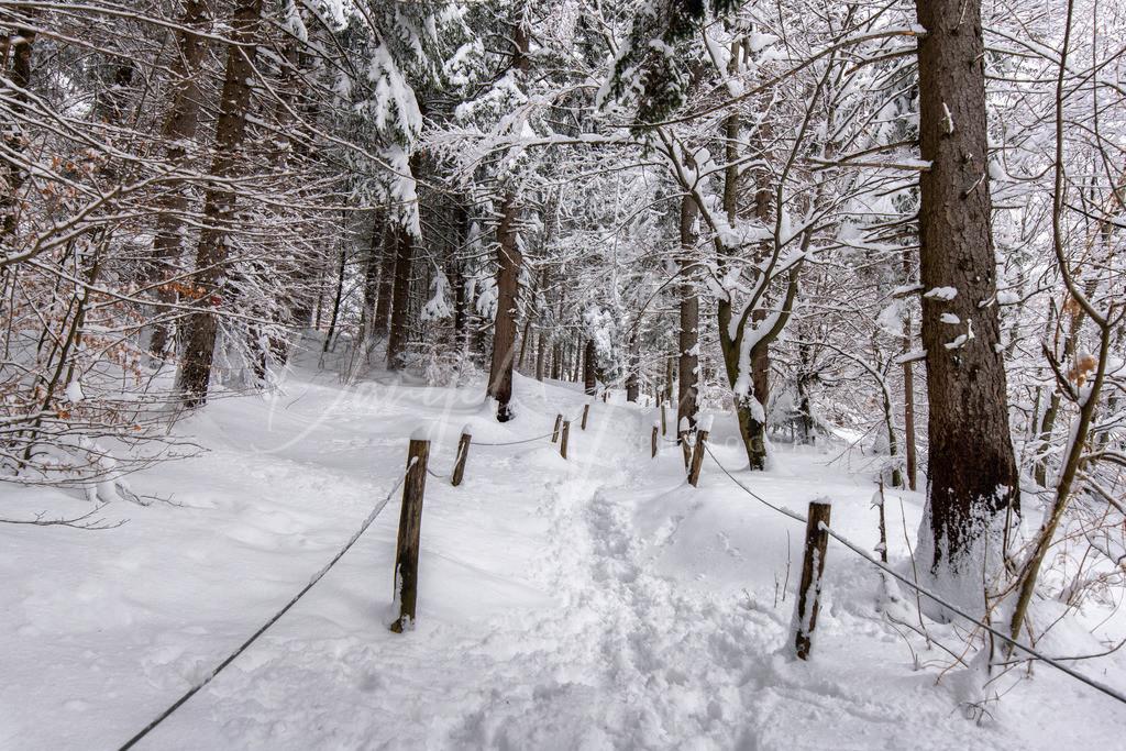 Nordkette   Winterwandern auf der Nordkette