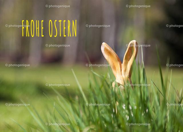 Postkarte Osterkarte Hasenohren: Frohe Ostern | Postkarte Osterkarte Ein Osterhase versteckt sich hinter einem Gras-Büschel, nur die Ohren sind zu sehen bei Tageslicht vor einem hellen Hintergrund