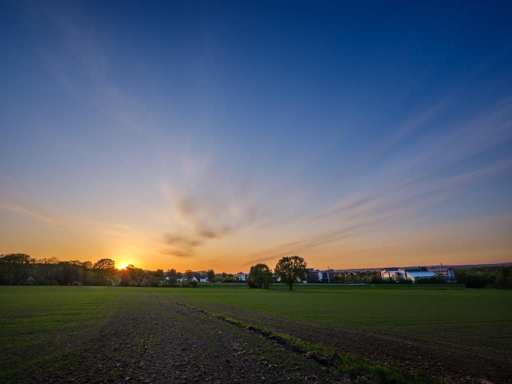 Sonnenuntergang in Stieghorst | Sonnenuntergang in den Feldern in Bielefeld-Stieghorst im April 2020.