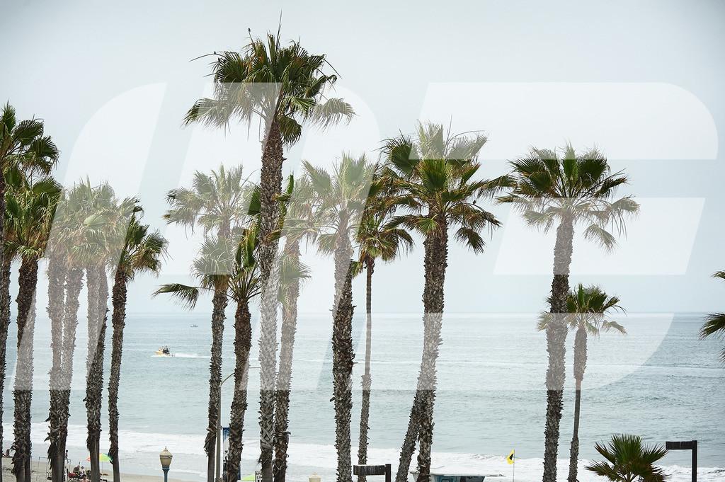 150616_RAAM15_47796_MartinBihounek-martinbihounek.com_EDIT | Palmen und Meer in Oceanside (CA) USA