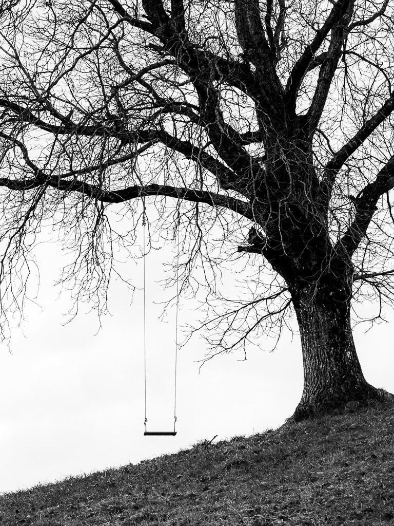 Lost Tree | Verlassene Schaukel an einem alten Baum