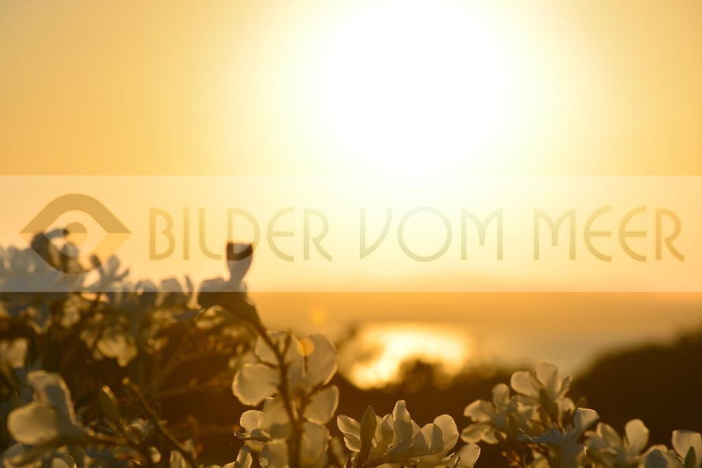 Bilder vom Meer | Bilder vom Meer Sonnenuntergang
