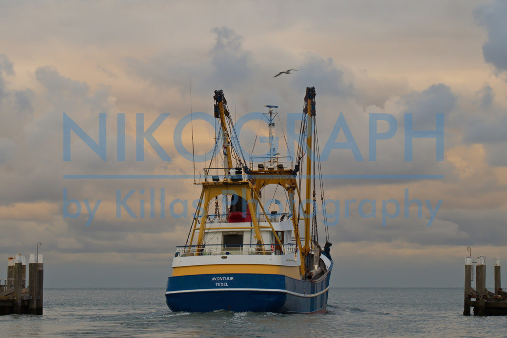 Fischerboot läuft aus   Am Sonntagabend läuft die Fischereiflotte, die im Hafen von Oudeschild liegt, aus, um in der Nordsee zu fischen. Oudeschild ist der drittgrößte Ort der Gemeinde Texel. Neben dem Fischereihafen gibt es im Hafen von Oudeschild auch eine Marina.
