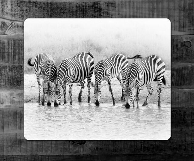 STRIPES - black & white   Kenia