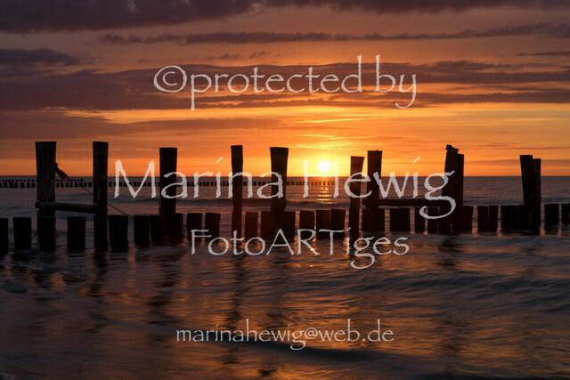 Zingst-Trip__MarinaHewig06593