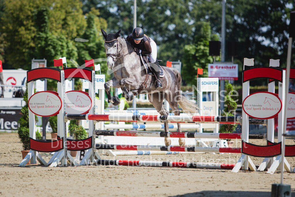 200819_Delbrück_Sprpf-A_2_1-241 | Delbrück Masters 2020 Springpferdeprüfung Kl. A** 4-6jährige Pferde