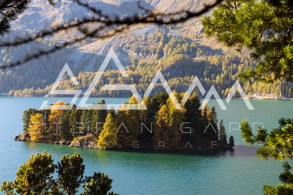 Silser See | Engadin