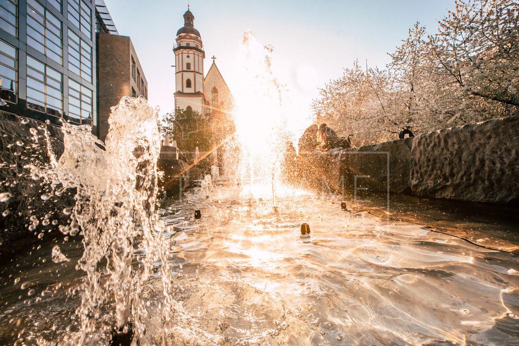 Leipzig Thomaskirche Kirchblüten Frühling b  | Es grünt so grün, wenn Leipzigs Blüten blühen. Der Springbrunnen vor der Thomaskirche in Leipzig lädt zum plätschern ein.