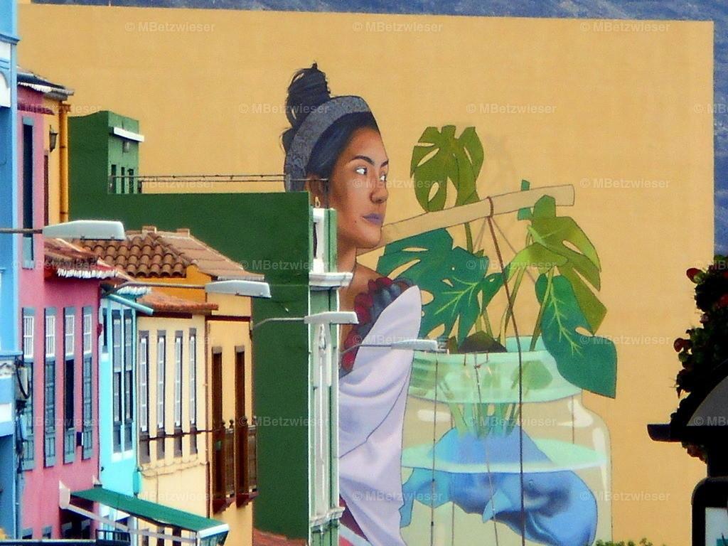 DSCN1262 | Bild auf Hauswand in Santa Cruz de La Palma