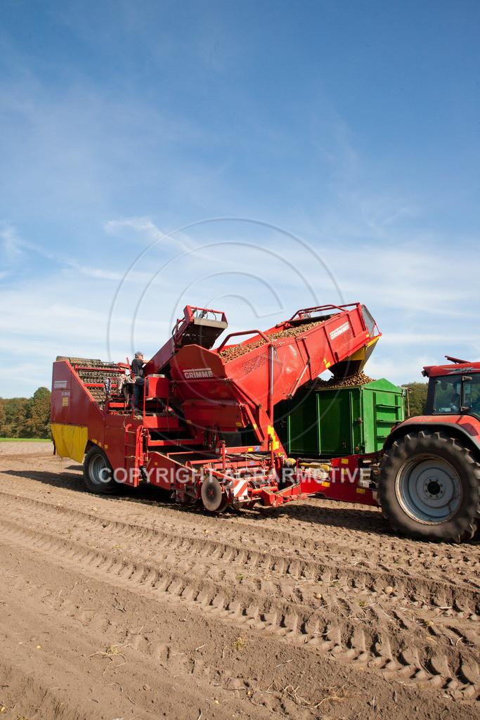 20110929-IMG_5831 | Ernte auf einem Kartoffelfeld - AGRARBILDER