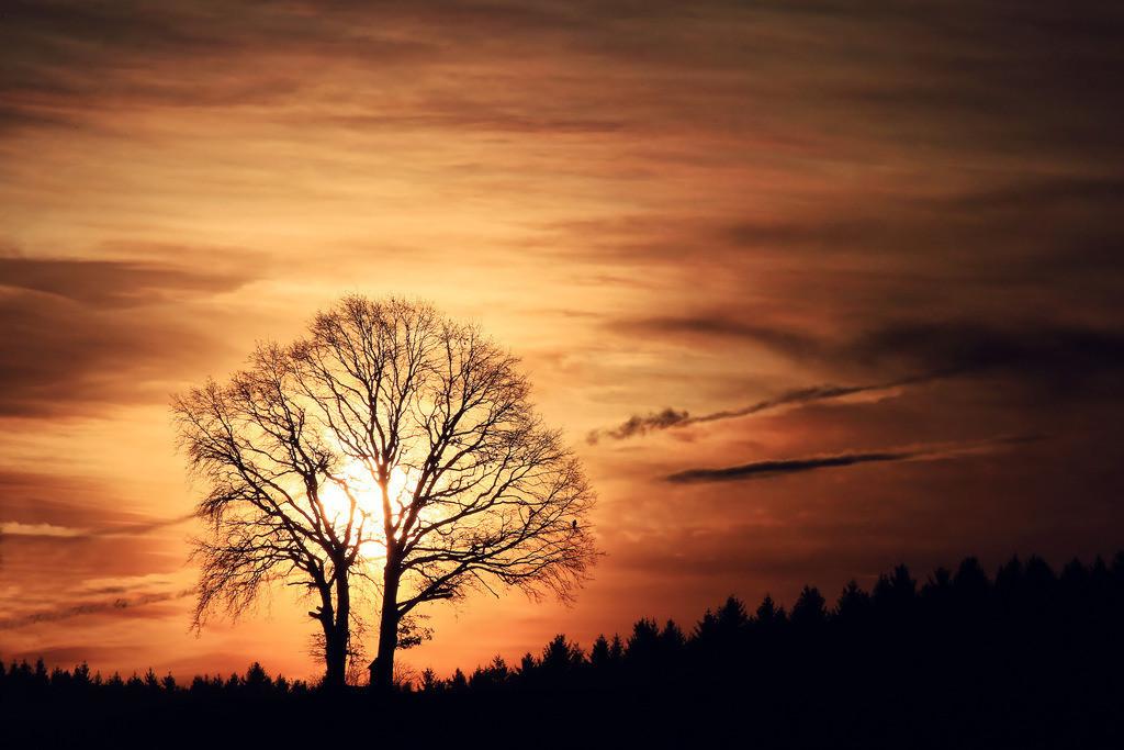 062-Sonnenaufgang-1