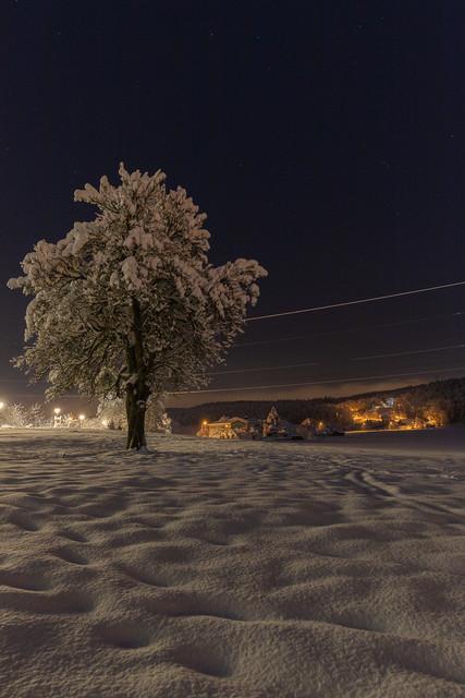 Lichter der Nacht 2 | Winterlandschaft am Ortsausgang, die warmen Lichter erhellen die Nacht.