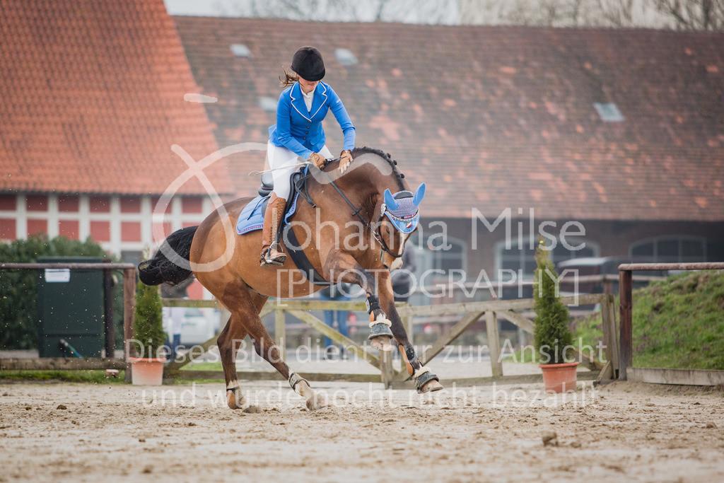 190406_Frühlingsfest_StilE-044 | Frühlingsfest der Pferde 2019, von Lützow Herford, Stil-WB mit erlaubter Zeit